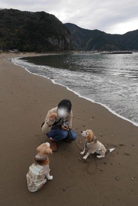 104宇久須の海岸散歩2