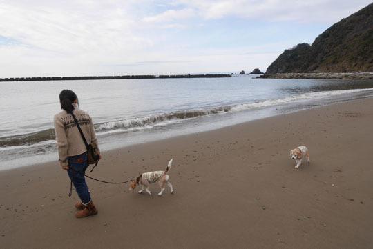 103宇久須の海岸散歩