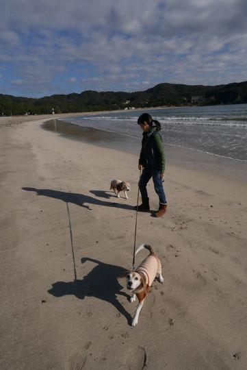 208海岸散歩