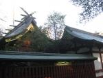 大國魂神社-本殿23