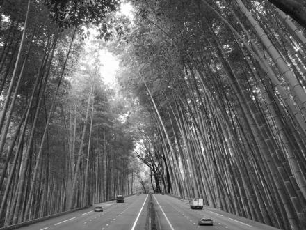 高速道路を合成