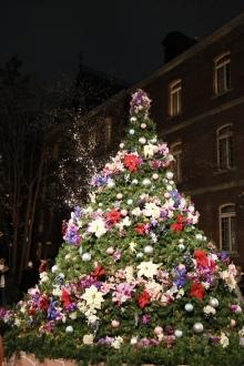 丸の内クリスマス