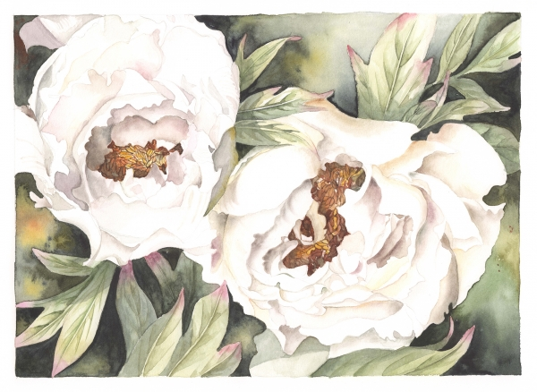 flower034small.jpg