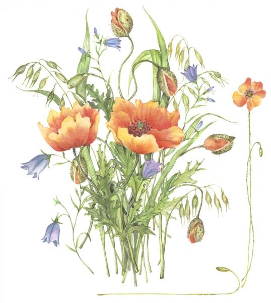 flower044small.jpg