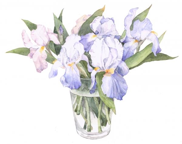 flowers32Nsmall.jpg