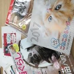 猫セミナーお土産☆