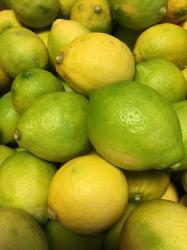 国産檸檬☆