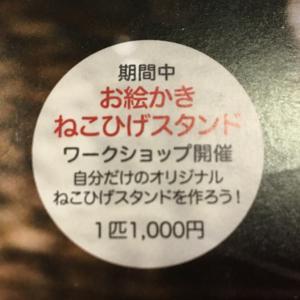 ねこひげスタンド写真展DM2☆