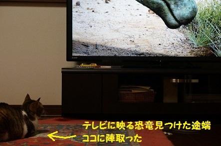 日本にいた恐竜だって。