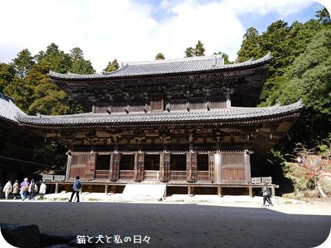 20161124-007.jpg