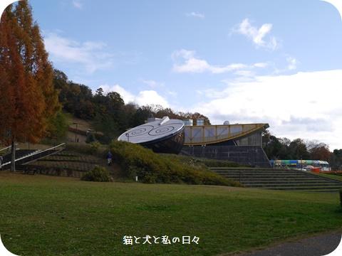 20161129-009.jpg