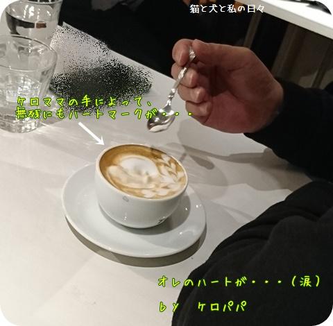 20170108-006.jpg
