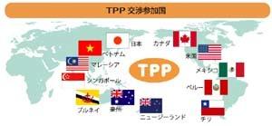 TPP交渉