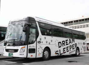 DREAM SLEEPER1