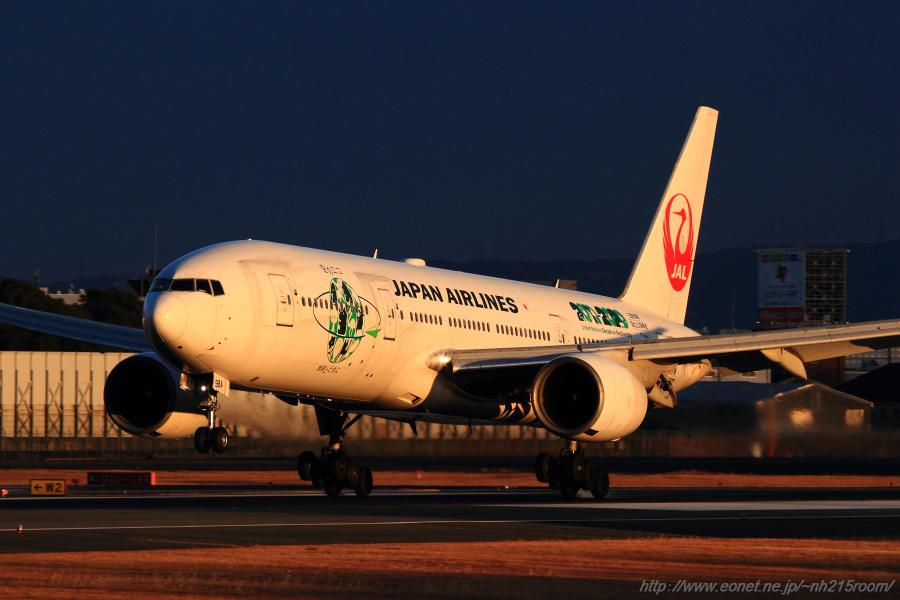 JAL B777-246 / JA8984@伊丹スカイパーク