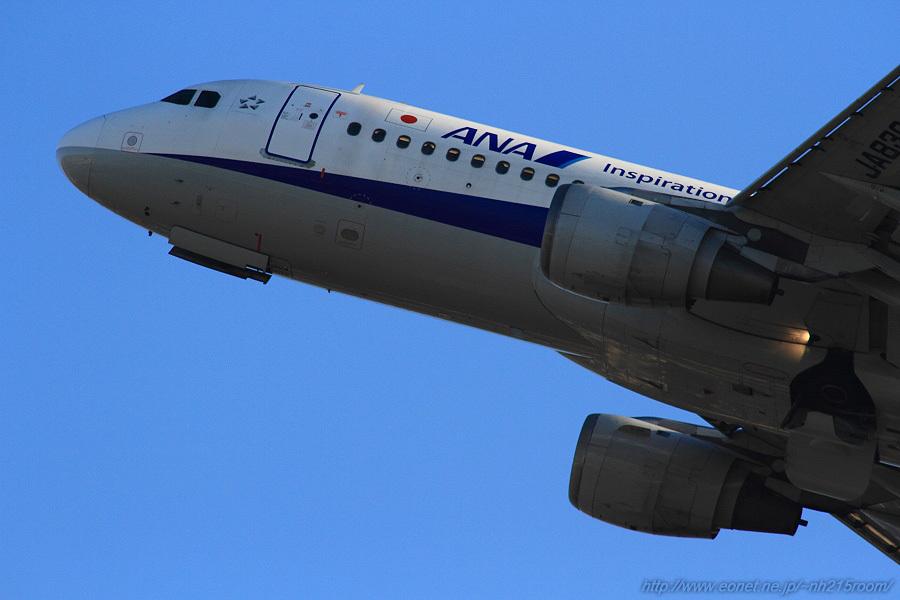 ANA A320-211 / JA8304@猪名川土手