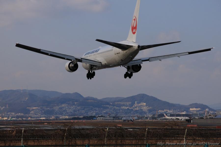 JAL B767-346ER / JA601J@千里川土手
