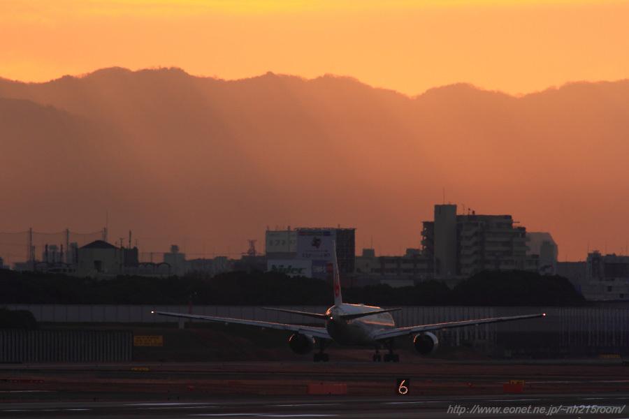 斜光降り注ぐ空&JAL B777-289 / JA8979@猪名川土手