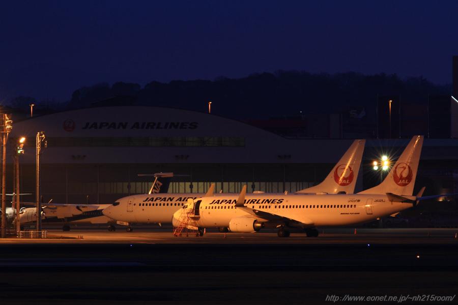 北格納庫前駐機場のJAL B737-846 JA345J&JA325J@猪名川土手