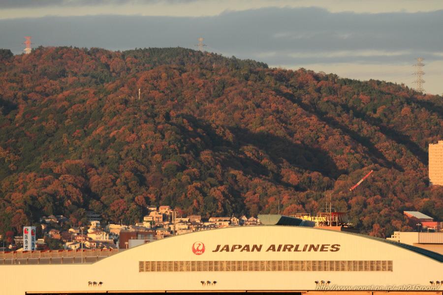 紅葉の山とJALハンガー@RWY14Rエンド・伊丹リサイクルセンター周辺