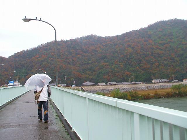 雨の千種川