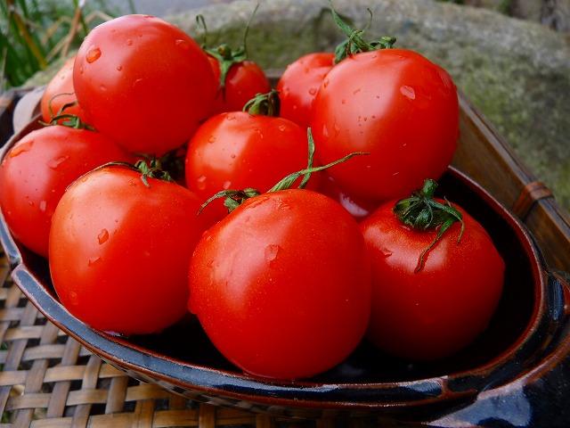 フルティカトマト