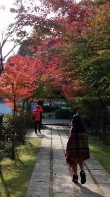 2016.11.13 錦帯橋 002