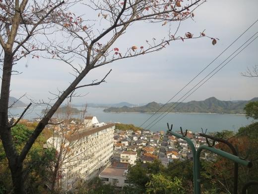 2016.11.26 大久野島 048
