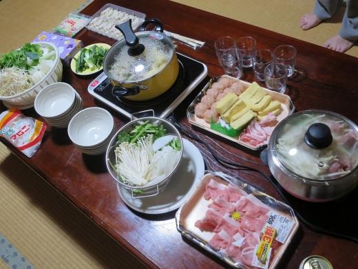 2016.11.26 大久野島 056