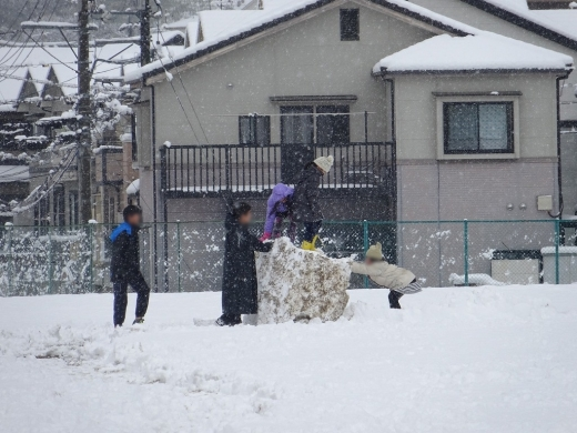 2017.01.15 雪 027
