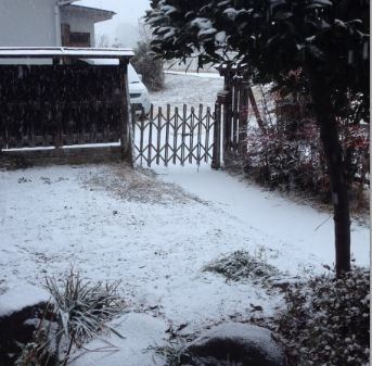しっかり雪!!