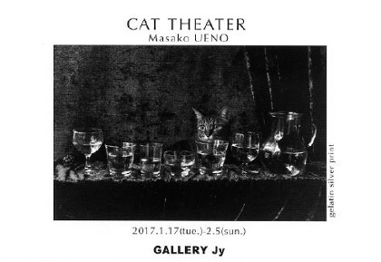 CAT THEATER vol 17