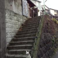 〆はいつものギャラリー猫町