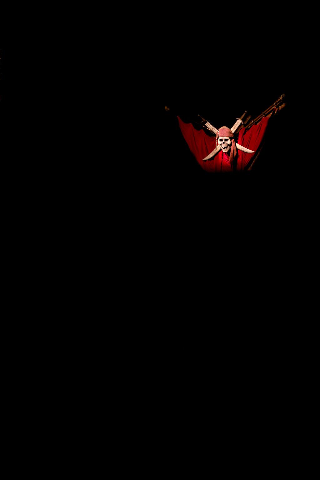 カリブの海賊 トンネル入口部(アトラクション)(アドベンチャーランド)(東京ディズニーランド)