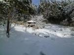 雪かき19