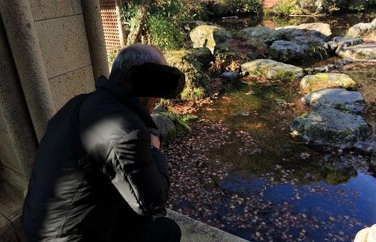 2016 12 18 大山崎山荘 日本庭園 ブログ用.jpg