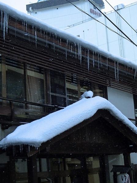 2017 1 19 鳴子温泉 氷柱 ブログ用.jpg