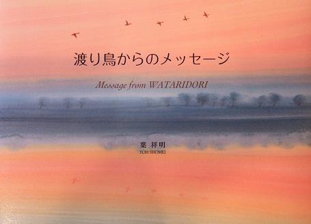 渡り鳥からのメッセージ