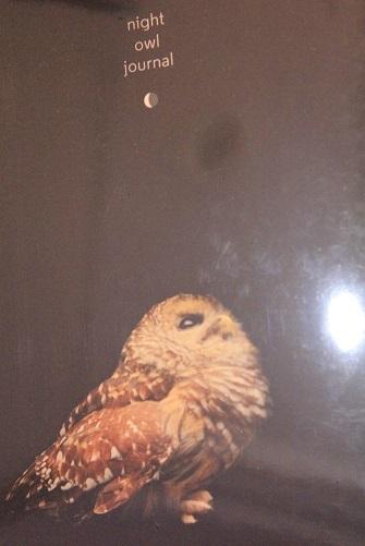 0338 night owl journal
