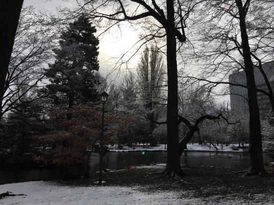 冬景色~道庁編④