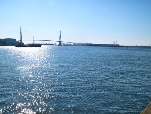 IMG_8618  つばさ橋 ベイブリッジ