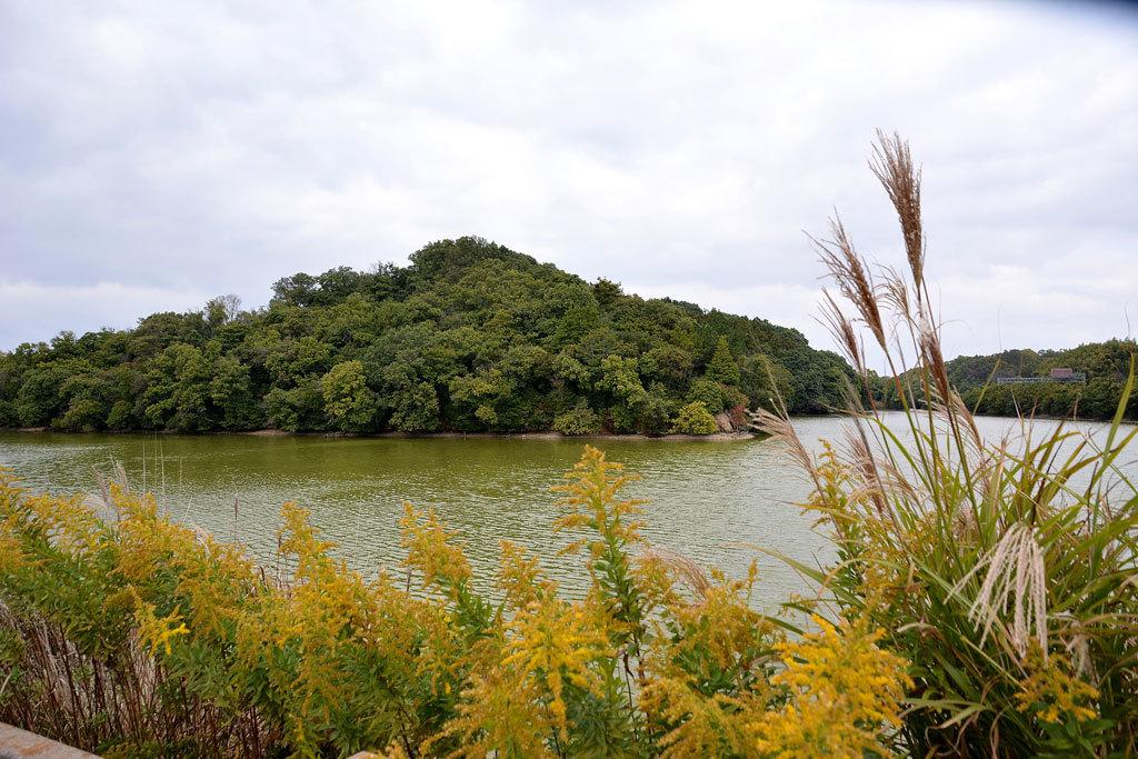 10ウワナベ古墳参考地