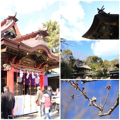 磯崎神社参拝②