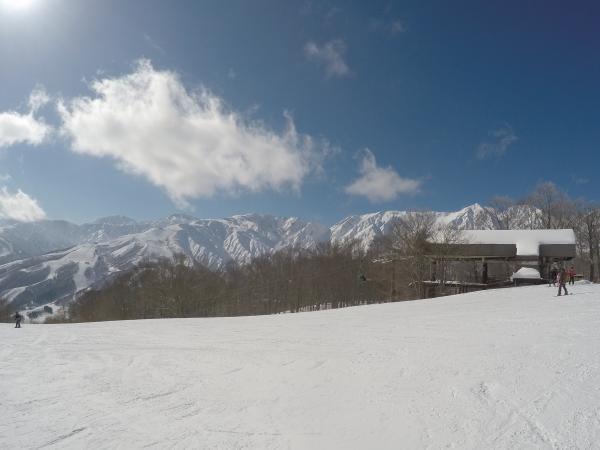 岩岳0129_後立山連邦キレイ