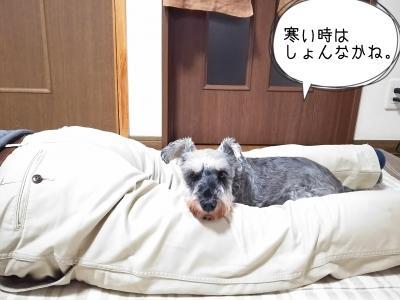 moblog_9ac75f74.jpg