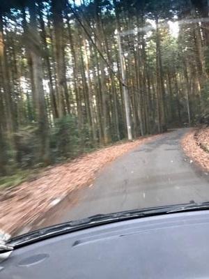 羽黒山 ワインディング