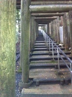 高野山 奥座敷 秘境 立里荒神 連なる鳥居階段