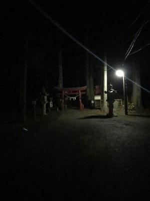 宇都宮 羽黒山 夜の鳥居