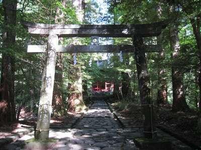 滝尾神社 運試しの鳥居