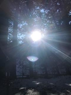 日光最強霊地 滝尾神社 三本杉で勤行後、神様から光が